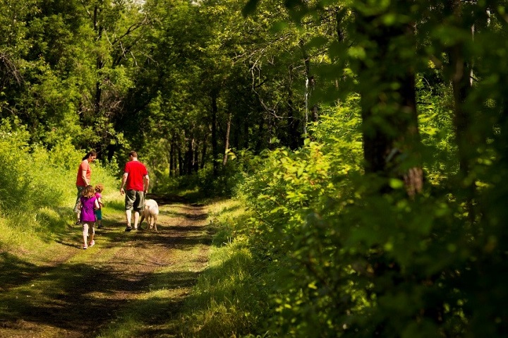 Exploring the trails at Batoche National Historic Site