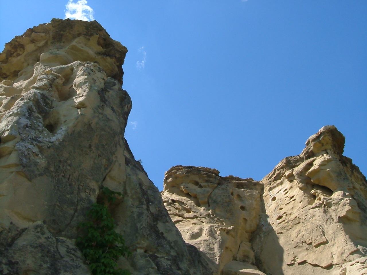 Estevan Area Landscape