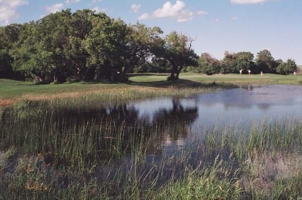 24+ Avonlea golf course saskatchewan info