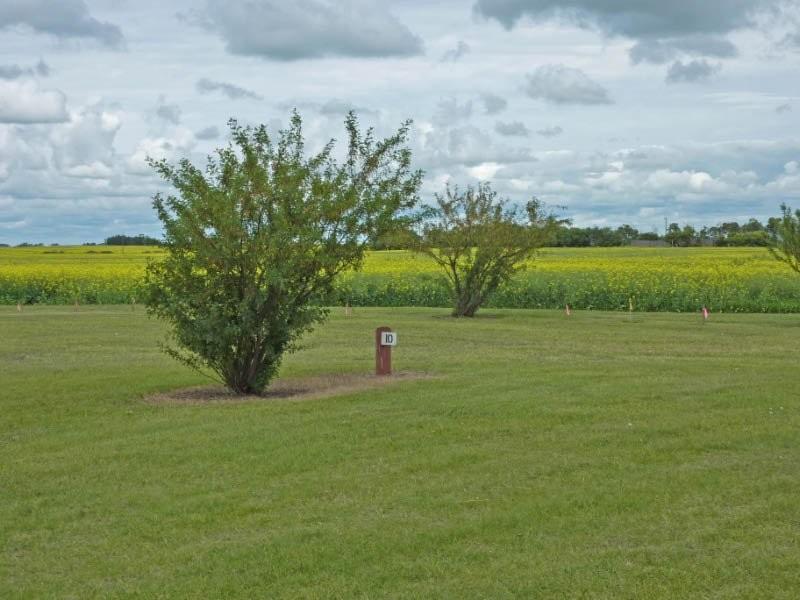 Hookup Sites Saskatchewan