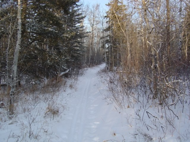 Turtle lake trail head