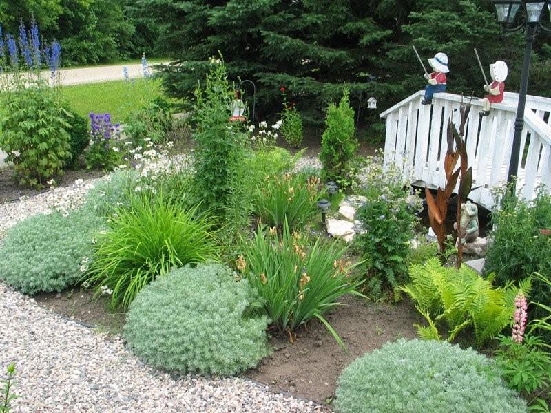 White Fox - Local Garden