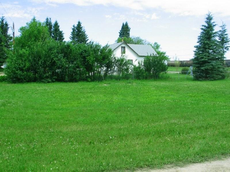 White Fox - Residential Area