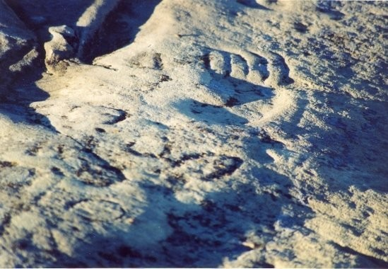St. Victor Petroglyphs Provincial Historic Park