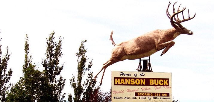 Famous symbols of Biggar are Milo Hanson and The Hanson Buck - This Buck is the world record (213 1/8) typical White Tailed Deer